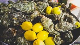 Le plan rapproché des huîtres fraîches et les citrons se situant en métal bucket Photo libre de droits