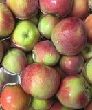 Le plan rapproché des pommes rouges et vertes organiques fraîches flottant dans l'eau avec de l'eau se laisse tomber Image libre de droits