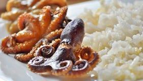 Le plan rapproché des poulpes entiers de bébé a servi avec du riz Image libre de droits