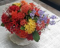 Le plan rapproché du jasmin d'Ixora coloré/Indien occidental fleurit le bouquet dans le vase en céramique avec l'espace de copie photo libre de droits