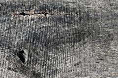 LE PLAN RAPPROCHÉ GRIS DU GRAIN EN BOIS QUTH A VU DES MARQUES photos libres de droits