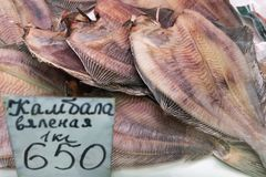 Le plan rapproché sec a salé des poissons plats sur le compteur au marché de fruits de mer Image libre de droits