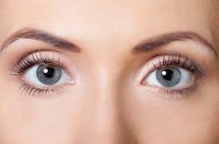 Le plan rapproché a tiré des yeux de femme avec le maquillage de jour long photos libres de droits
