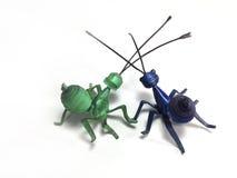Le plastique couvre le modèle des fourmis Photo libre de droits