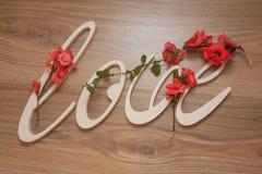 Le plastique marque avec des lettres l'amour sur le fond en bois Photo libre de droits