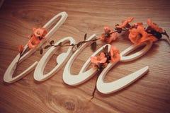Le plastique marque avec des lettres l'amour sur le fond en bois Photo stock