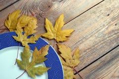 Le plat et l'érable part sur une table en bois Image libre de droits