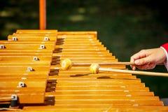 Le playson de musicien sur le xylophone Concert utilisant la percussion photo libre de droits