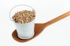 Le plein seau de grains d'orge perlée se tient dans une cuillère en bois Photographie stock