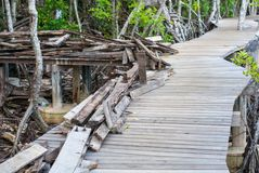 Le pli en bois de planche sur le pont en bois, certains a l'insi martelé par clous images libres de droits