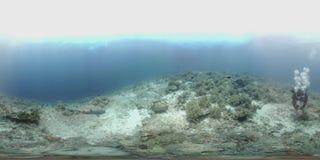 le plongeur de 360 vr nage au bord d'un récif coralien banque de vidéos
