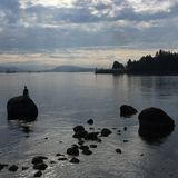 Le plongeur, digue, Vancouver Photo libre de droits