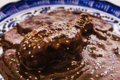 Le Poblano de taupe avec le poulet est nourriture mexicaine à Puebla Mexique image stock
