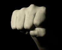 Le poing de l'homme Image libre de droits