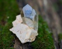 Le point citrin de quartz de cathédrale du Brésil s'est niché dans la matrice sur la mousse, le bryophyta et l'écorce, rhytidome  photo stock