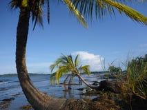 Le point de Paki, ville de Bocas Image stock