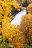 Le poisson à chair blanche riant tombe en automne, Michigan du nord, Etats-Unis images libres de droits