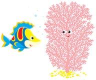 Le poisson coloré parle avec le corail rose Photos libres de droits