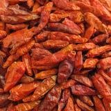 le /poivron a séché des poivrons de paprika Photos libres de droits