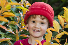 Le pojke i trädgård mellan leaves Arkivfoto