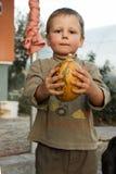 Le pojkeanseende med stor gul pumpa i händer Pojke med pumpa pojken rymmer en pumpa arkivbild