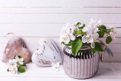 Le pommier fleurit au vase et aux coeurs décoratifs sur le bois blanc Images libres de droits