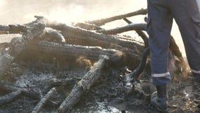 Le pompier s'éteint un feu d'un tuyau d'incendie Brûlé aux charbons, les arbres noirs fument dans la perspective des pieds banque de vidéos