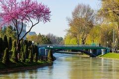 Le pont au-dessus du quai d'ancre à Tashkent, l'Ouzbékistan photo libre de droits