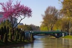 Le pont au-dessus du quai d'ancre à Tashkent, l'Ouzbékistan image stock