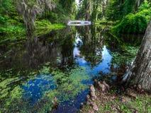 Le pont blanc au-dessus de l'eau, avec de la mousse a couvert des arbres Charleston, Sc images libres de droits