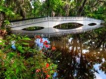 Le pont blanc au-dessus de l'eau, avec de la mousse a couvert des arbres Charleston, Sc image stock