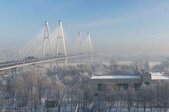 Le pont câble-resté dans le brouillard d'hiver Photos libres de droits