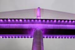Le pont chay de Bai dans la baie Vietnam de halong s'est allumé avec l'éclairage pourpre Image libre de droits