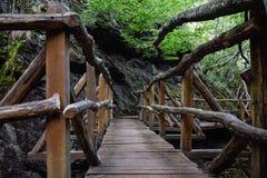 Le pont en bois bulgarien dedans la forêt Images libres de droits
