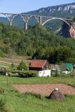 Le pont est un pont concret de voûte au-dessus de Tara River dans Monténégro du nord Images libres de droits