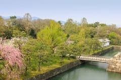 Le pont occidental de Honmaru de château de Nijo avec des arbres de fleur de Sakura luttent Photographie stock