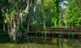 Le pont rouge au-dessus de l'eau, avec de la mousse a couvert des arbres Charleston, Sc image stock