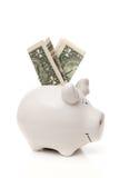 Le porc de porcelaine avec des billets de banque du dollar des Etats-Unis Image stock