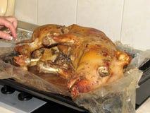 Le porcelet de nourrisson a fait entier cuire au four dans la casserole d'égoutture pendant la cuisson Photos stock