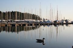Le port à Oslo Image libre de droits
