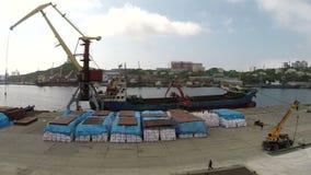 Le port dans Vladivostok banque de vidéos