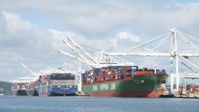 Le port des terminaux moyens de port d'Oakland Photo stock