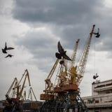 Le port en Mer Noire Image stock