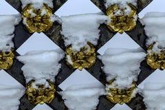 Le portail avec des raisons dans des soulagements dorés a la feuille d'or images libres de droits