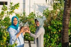 Le portrait de deux belles femmes de hijab a partag? le caf? et des amandes ensemble devant leurs caf?s se tenant et bavard?s photo stock