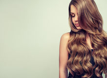 Le portrait de la jeune femme magnifique avec élégant composent et coiffure parfaite images stock