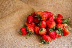 Le portrait des fraises rouges fraîches a arrangé sur un sac, qui est à l'arrière-plan Photo libre de droits