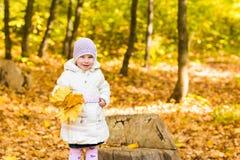 Le portrait du petit bébé heureux jouant avec l'automne jaune pousse des feuilles au fond naturel de parc d'extérieur photo stock