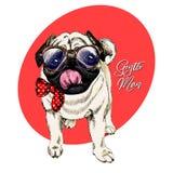 Le portrait du roquet de hippie portant des lunettes et le lien cintrent Illustration détaillée de chien gravée par vecteur Tiré  illustration stock