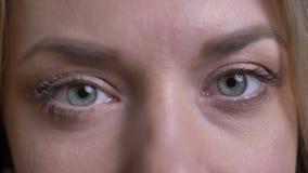 Le portrait en gros plan de yeux de la femme d'affaires blonde d'une cinquantaine d'années observe heureusement dans la caméra su banque de vidéos